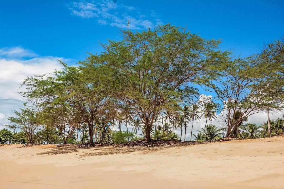 Praia-de-Tourinhos-RN